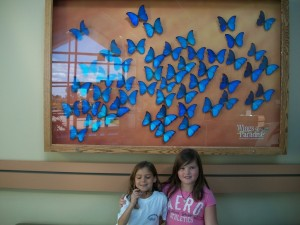 best_family_places_to_visit_in_Ontario
