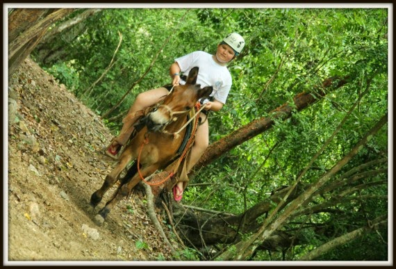 canopy_river_tours
