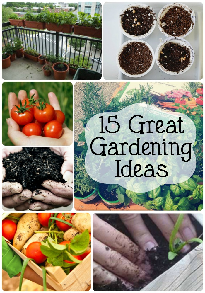 15 great gardening ideas