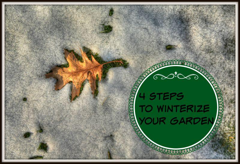 winterize-your-garden
