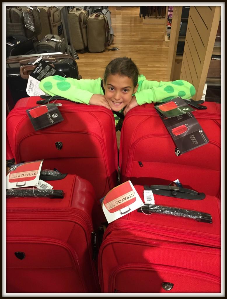 luggage_ainsley