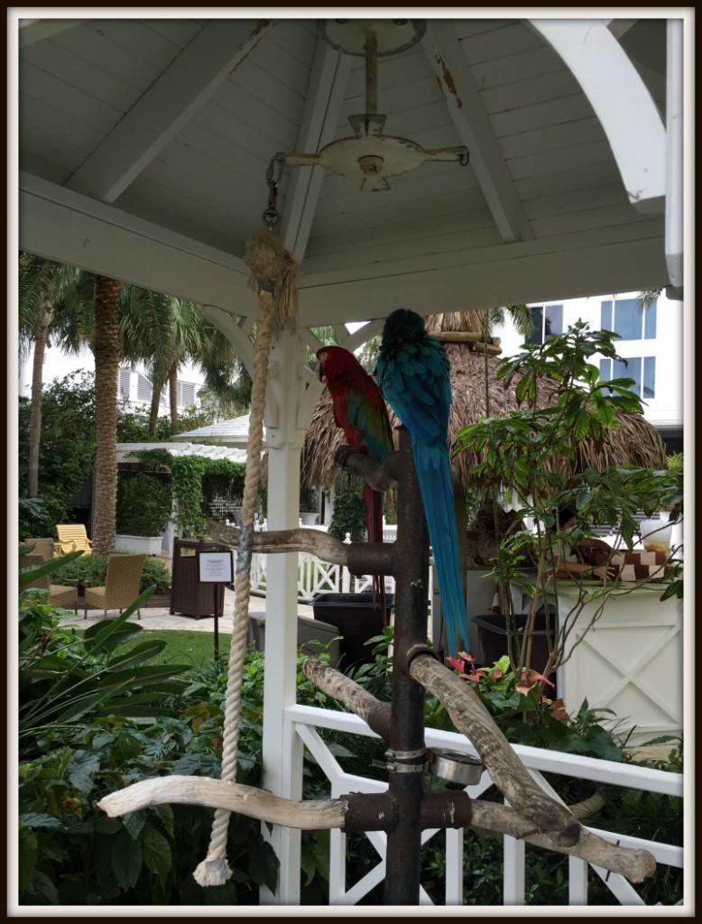 Palms Hotel and Spa Miami