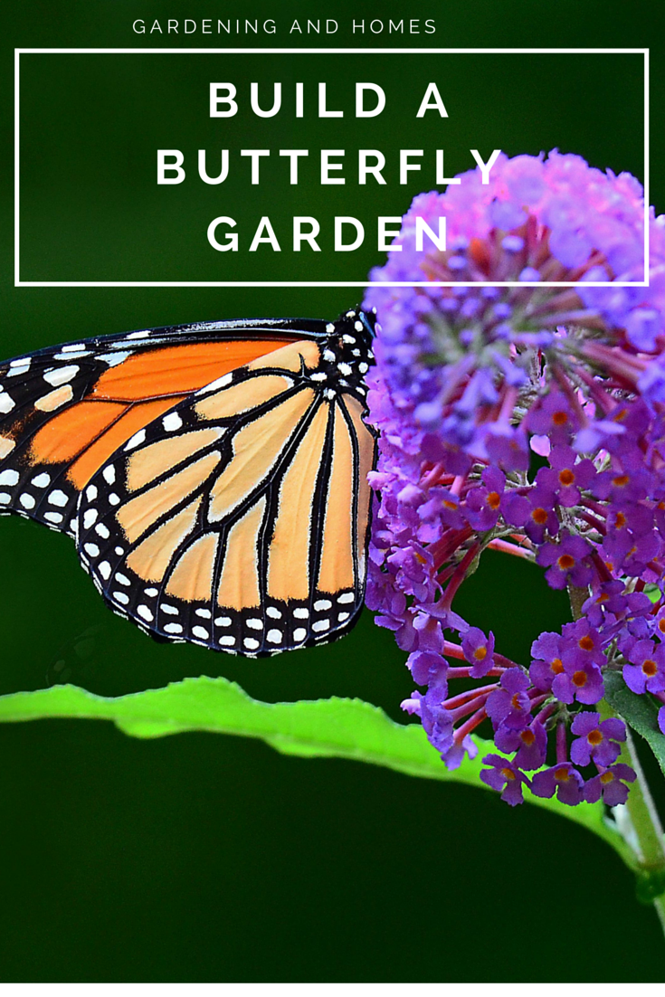 butterfly_gardens