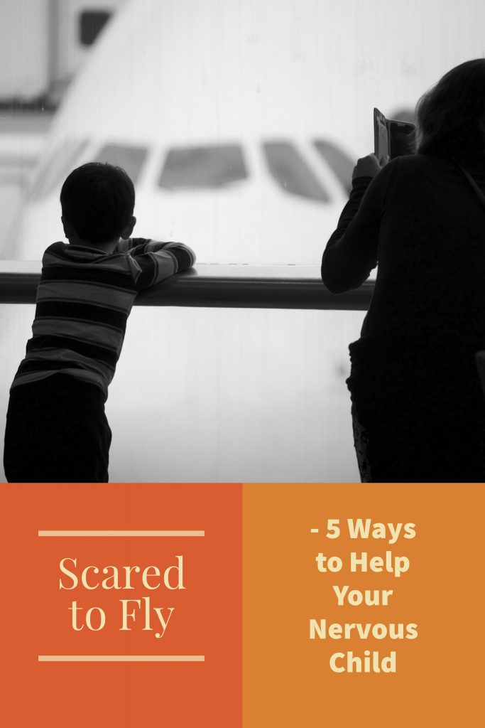 scared_to_fly