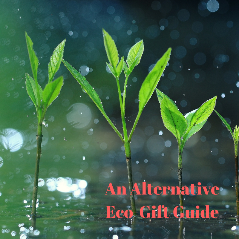 alternative eco-gift guide