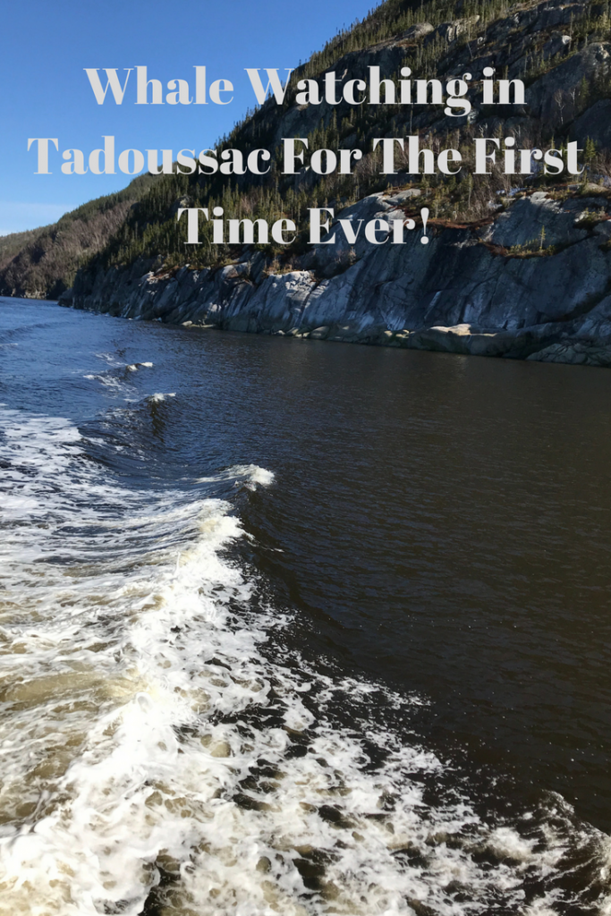 tadoussac_whale_watching