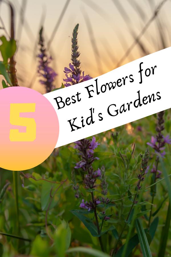 flowers_for_kids_gardens