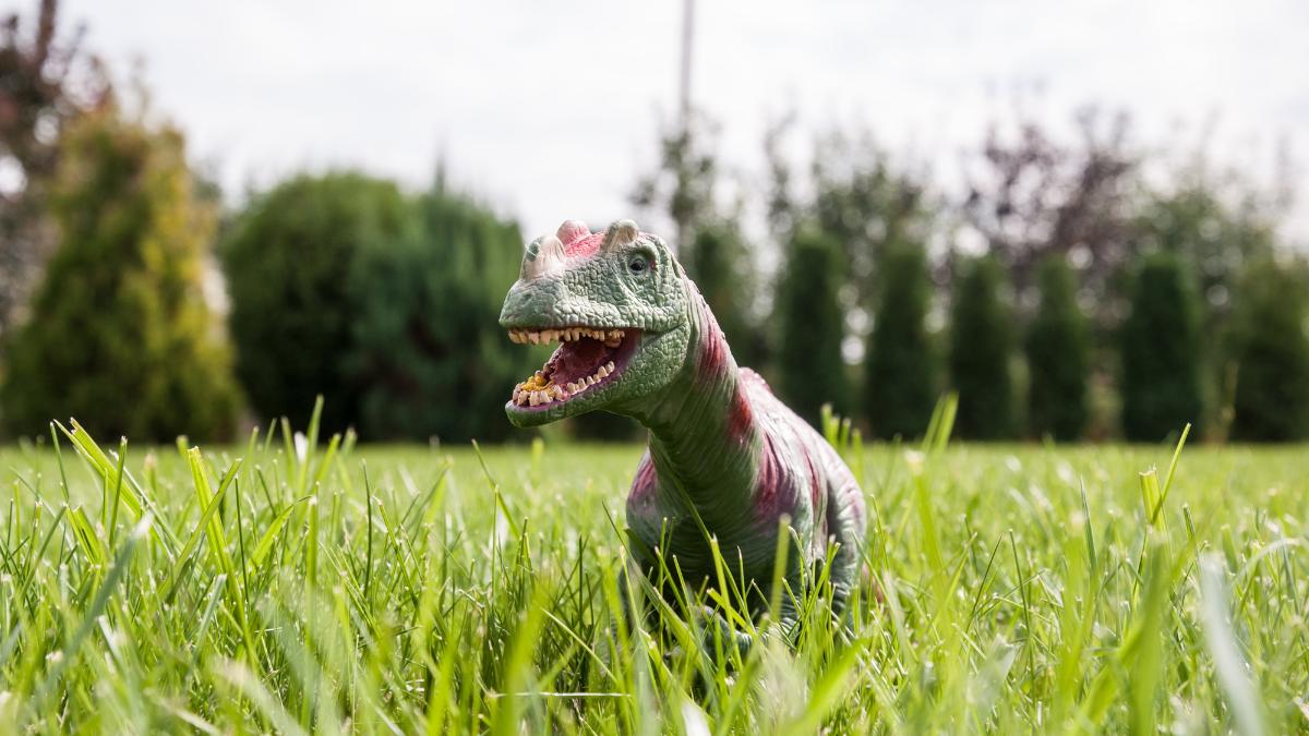 dinosaur_toys_in_grass