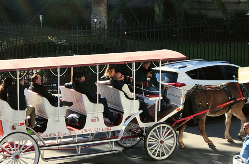 New_orleans_carriage